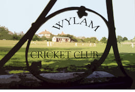 173-Cricket Cutout whole + TEXT copy.jpg
