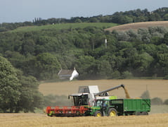 Harvest above cottage 2009.jpg